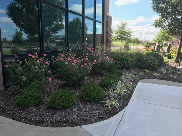 New Ball Landscaping – Before and After!