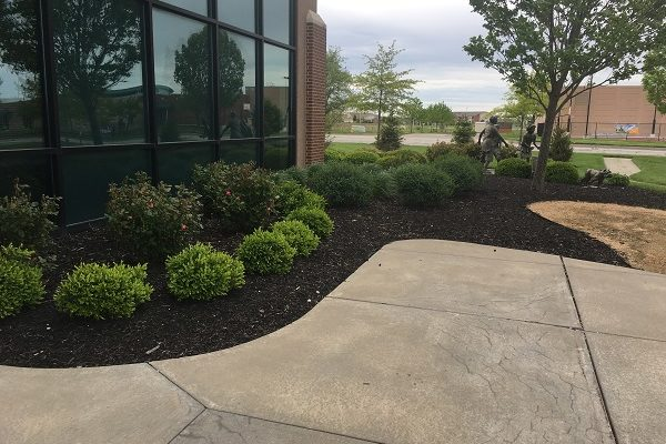 Ball-Landscaping-Before-3