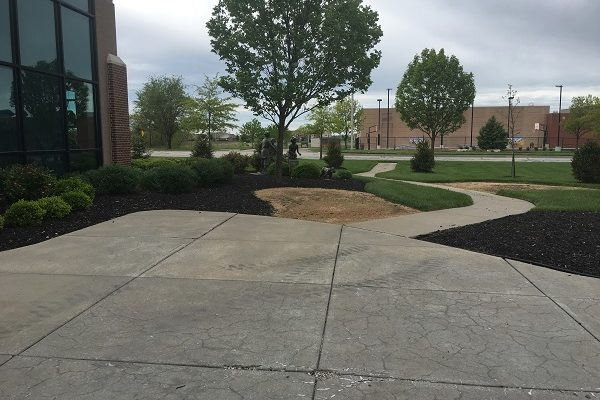 Ball-Landscaping-Before-5