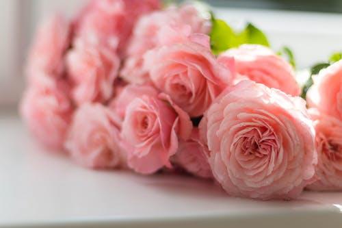 Spotlight on Preferred Vendor: Floral Accents